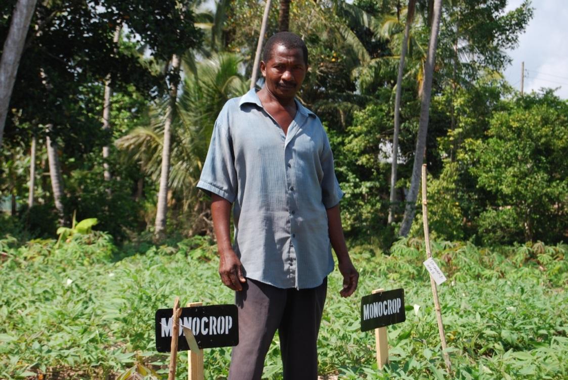 Farmer ACAI